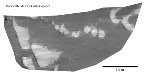 Backscatter da area Costa-Caparica