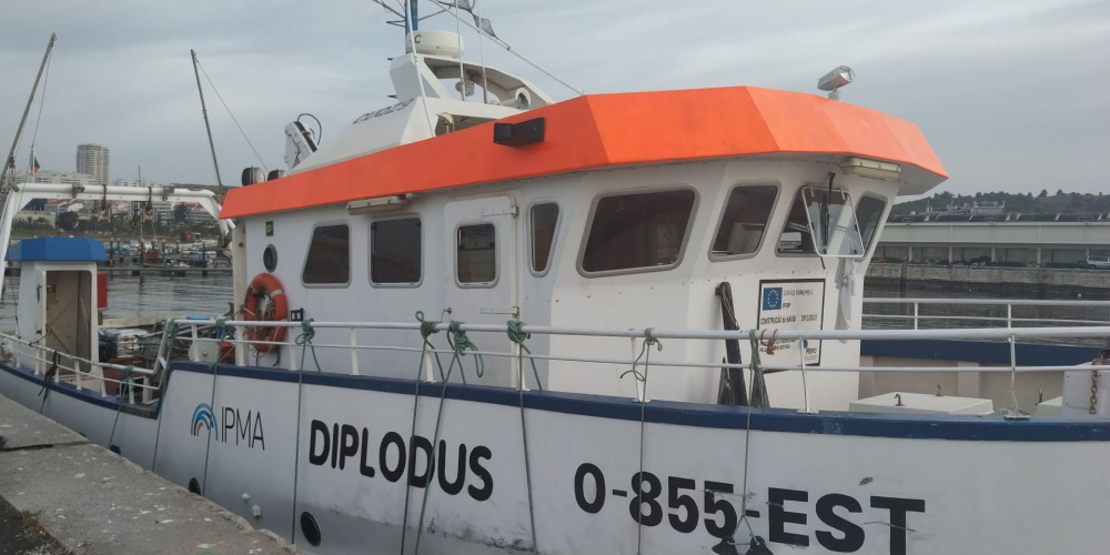 "Research vessel ""Diplodus"""